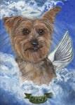 pet portrait artist chicago